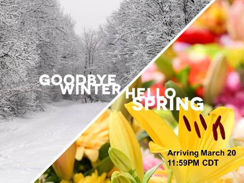Image result for spring arrives